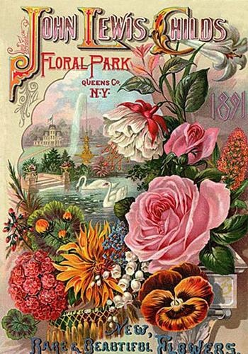 Childs Seed Catalogue Cover 1891 Magnet Floral Park
