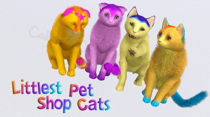 Sims  Pets How To Clean Cats