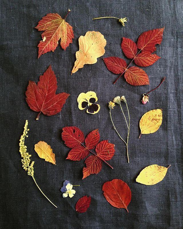 натуральный лен, осень, солнце за окном и уйма приятных забот на ближайшие дни, совсем нет свободного времени, но это так здорово. а вы любите лён? на сегодня это моя любимая ткань, очень настоящая и красивая.