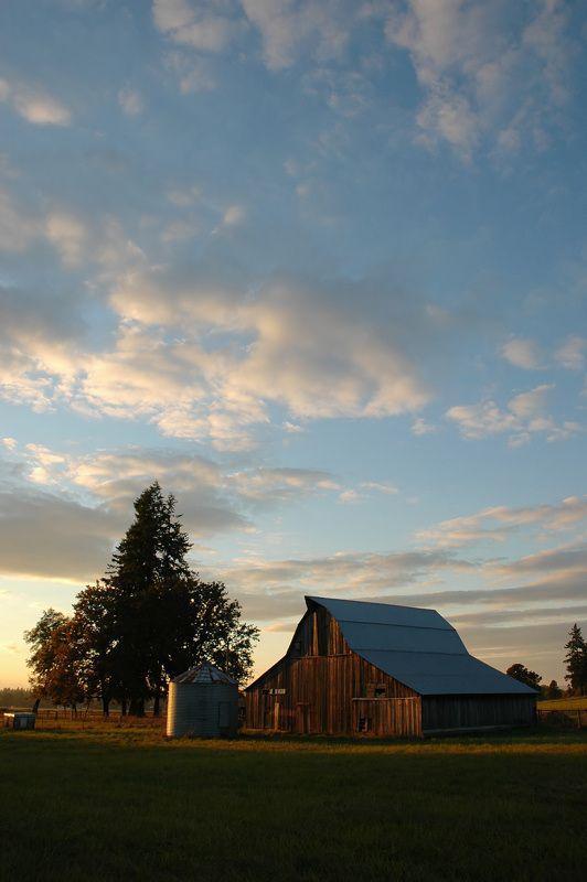 Barn in the Evening - Battle Ground, Washington.....Beautiful....I wanna go home!