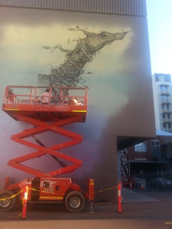 "BA2573/92: Wall design by Italian artist ""2501"" in Wolf Lane, Perth.  http://encore.slwa.wa.gov.au/iii/encore/record/C__Rb4010133__Swolf%20lane__Orightresult__U__X6?lang=eng&suite=def"