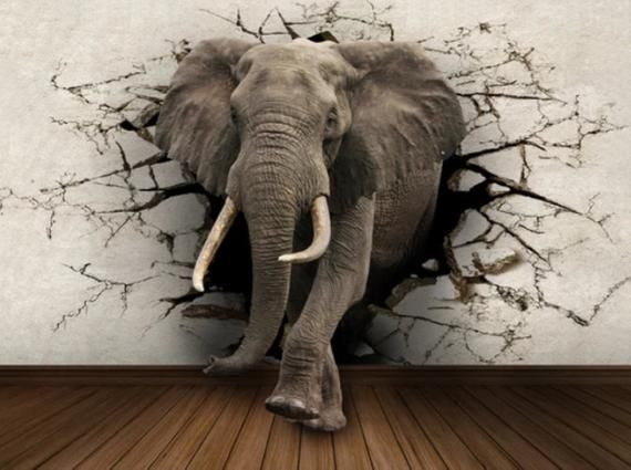 wall mural 3D elephant, wallpaper mural, wallpaper for bedroom, removable wallpaper mural for bedroom, wall decor, home decor