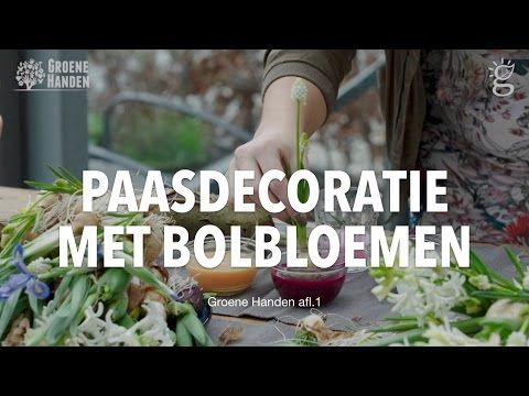 Een hangende paastak met bolbloemen! – 247Green.nl