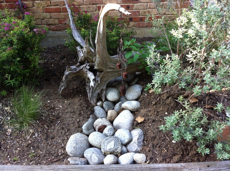 53 best rain garden ideas images on pinterest