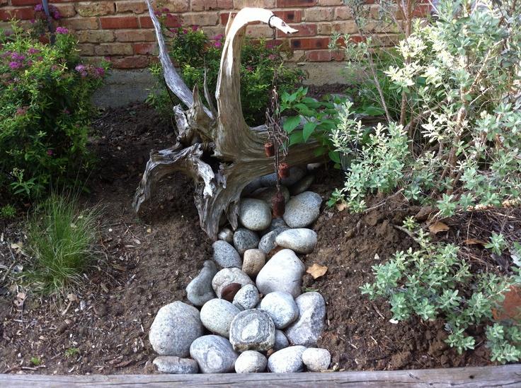 53 best Rain Garden Ideas images on Pinterest Rain garden