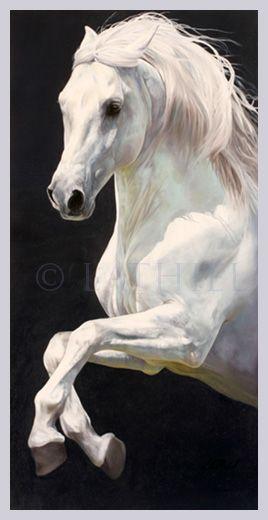 Arabian iridescence by Lesley Thiel