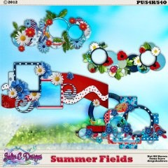 Summer Fields Clusters