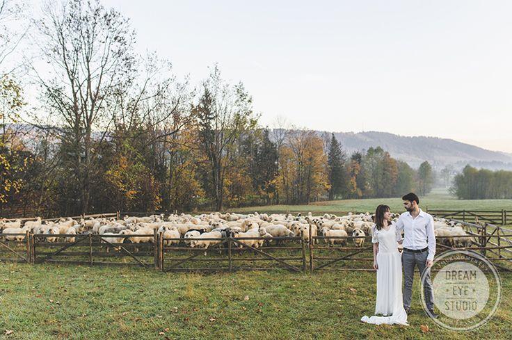 Wedding_session_couple_love_dawn_cute_sheep
