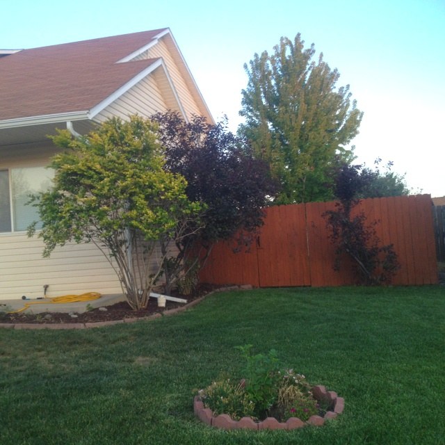 Fence Stain Color Sherwin Williams Cedar Bark Love