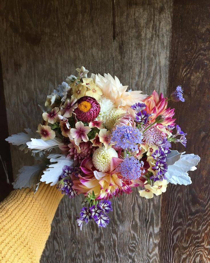 """46 mentions J'aime, 5 commentaires - Stacey Reding (@springboardfarm) sur Instagram: """"✨Bridesmaids bouquet ✨ I had just enough of the sugar stars phlox to incorporate some into the…"""""""