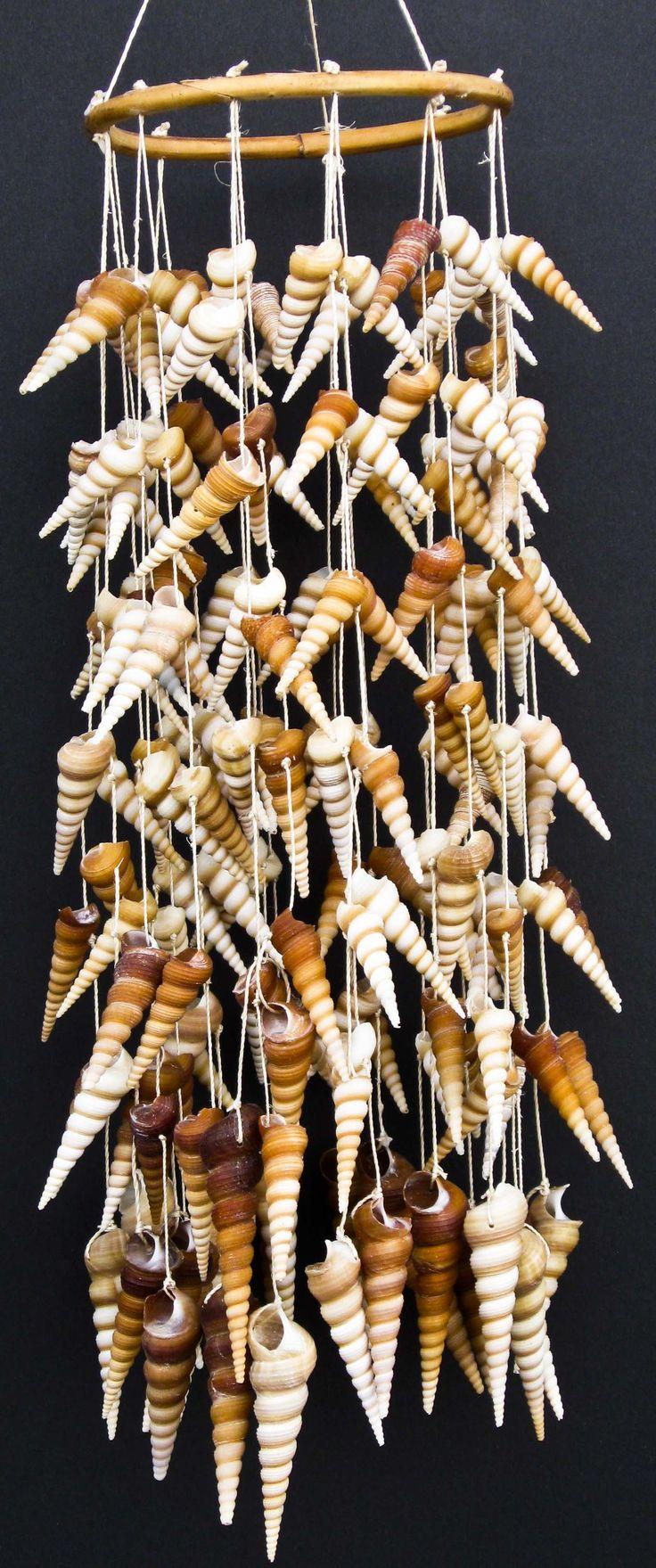 shells - caramel, cream, coral, toast, linen, slate background