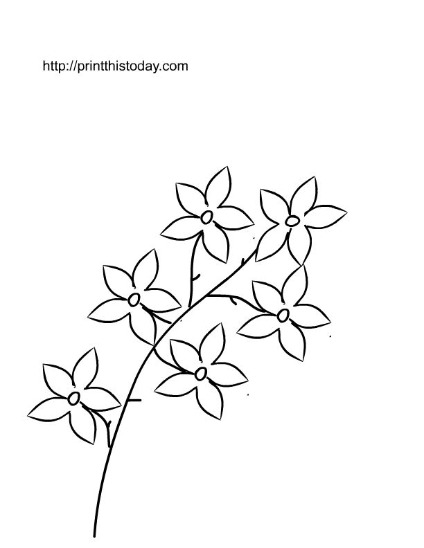 Here Is My Collection Of Free Printable Coloring Pages For Kids With Spring Flowers The Most Colorful Season Where Colors Are Spread Around