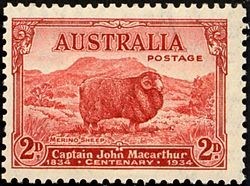 """An Australian stamp commemorating the centenary of the death of John Macarthur.  1834-1934.... At """"Elizabeth Farm"""" in 1794 he began his first experiments in improving wool growth by crossing hair-bearing Bengal ewes from India with Irish wool rams. """"By crossing the two breeds, I had the satisfaction to see the lambs of the Indian ewes bear a mingled fleece of hair and wool - this circumstance originated the idea of producing fine wool in New South Wales."""" Macarthur also ran mobs of Merino's."""