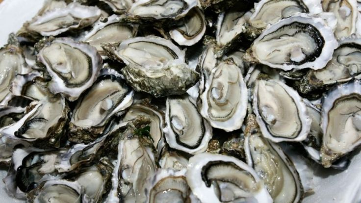 Best foo to fight against Erectile Dysfunction - Oysters
