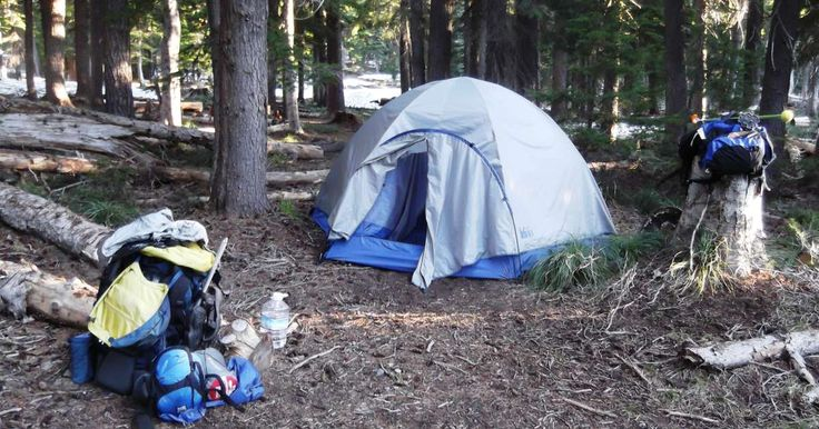 Cold Springs Campground in Sequoia Park, California | Cold Springs is surrounded…