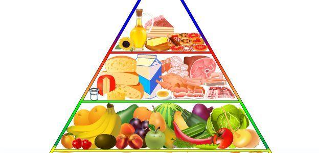 الهرم الغذائي بحث Google