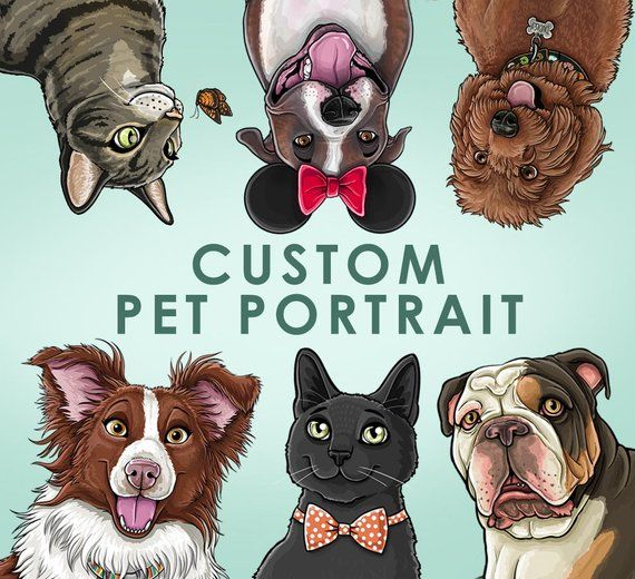 Custom Pet Portrait Hand Drawn Illustration Caricature Cartoon Pets 5x7 8x10 11x14
