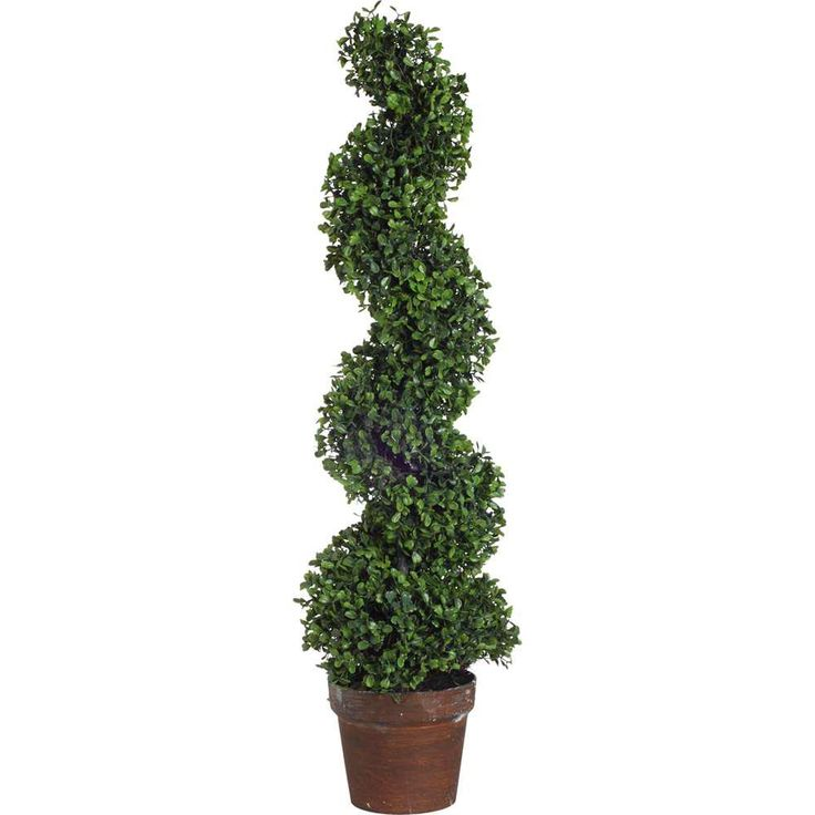 35 in. Decorative Boxwood Tree, Green