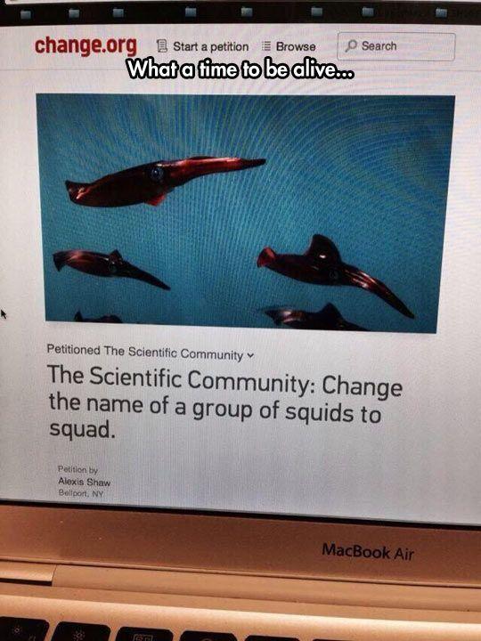 Thanks, Scientific Community