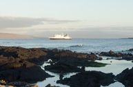 Galapagos Islands Cruise   Celebrity Xpedition: Celebrity Cruise Ship   Celebrity Cruises