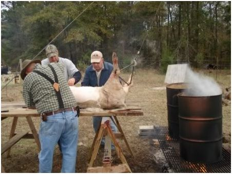 Processing your own pork – how to kill, butcher, and cook a pig