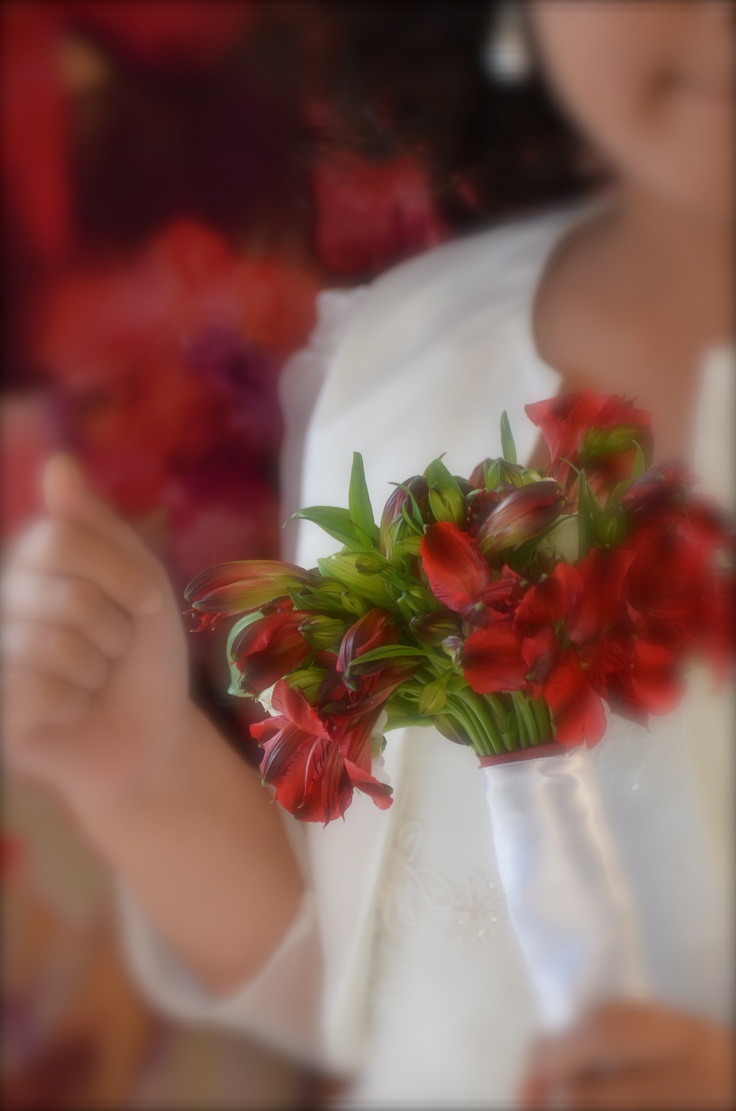 Flowers girls bouquets red peruvian lilies