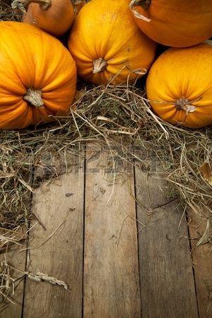 zucche arancioni giaceva su uno sfondo di legno con una cannuccia