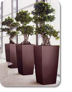 office flower pots. innovative indoor office planters work as floor and corner accents or desk shop effortlessly chic self watering in numerous flower pots l