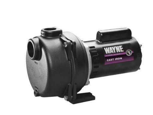Wayne WLS200 Lawn Sprinkler Pump, 2 HP