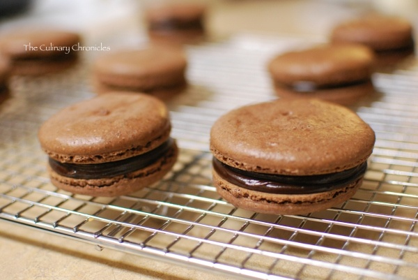 Chocolate macaroons, Chocolate espresso and Macaroons on Pinterest