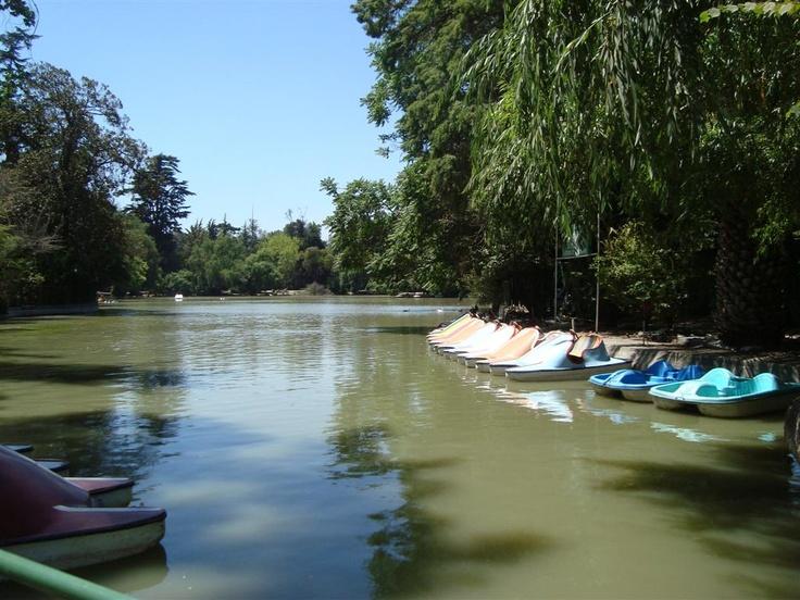 Parque O'Higgins - Chile