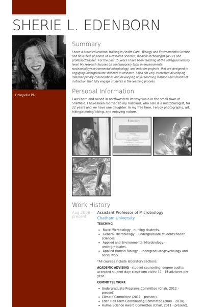 48 best cvs images on pinterest resume examples resume and art