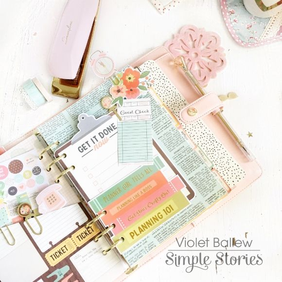 135 best carpe diem reset girl planners accessories for Planners anonymous