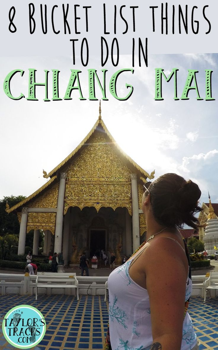 Heading to Chiang Mai? You need to try these 8 things! ******************************************** Chiang Mai Thailand | Chiang Mai things to do | Chiang Mai bucket list | Chiang Mai travel | Chiang Mai Thailand elephants | Chiang Mai temple | Things to do in Chiang Mai | Thailand travel | Thailand backpacking | Thailand travel tips | Thailand things to do | Where to stay in Thailand | Thailand planning | Thailand places to visit | Thailand destinations