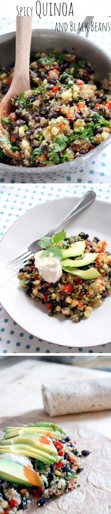 Spicy Quinoa and Black Beans \\  This easy, one-pot, vegan-friendly dish is sure to satisfy anyone who loves bold flavor! Nutrient-rich grains, vegetables, and beans make for a hearty meal topped with sour cream and avocado, or side to your favorite Mexican dish. \\ Bowl of Delicious!