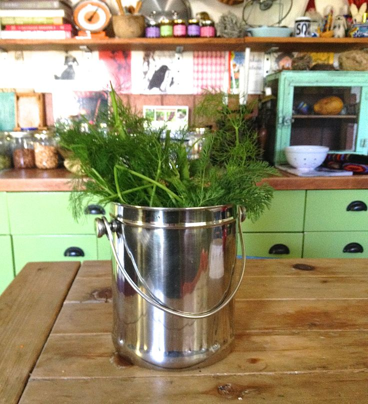 i keep this stainless steel compost pail by my sink and fill it with all my plant based kitchen scraps eggshells shredded egg cartons and loose tea