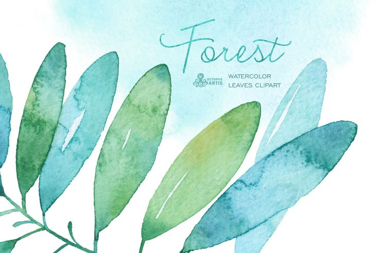 Forest watercolor leaves by OctopusArtis on Creative Market