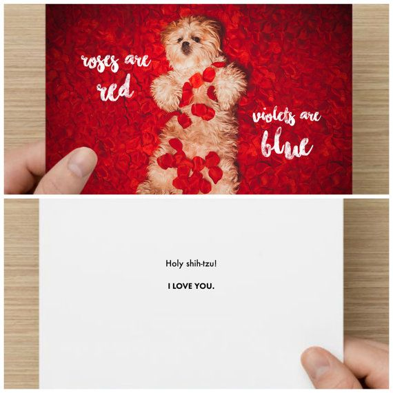 "The Frumpy Dog Valentines Day Card. ""Roses are red, Violets are blue. Holy Shih Tzu! I love you."""