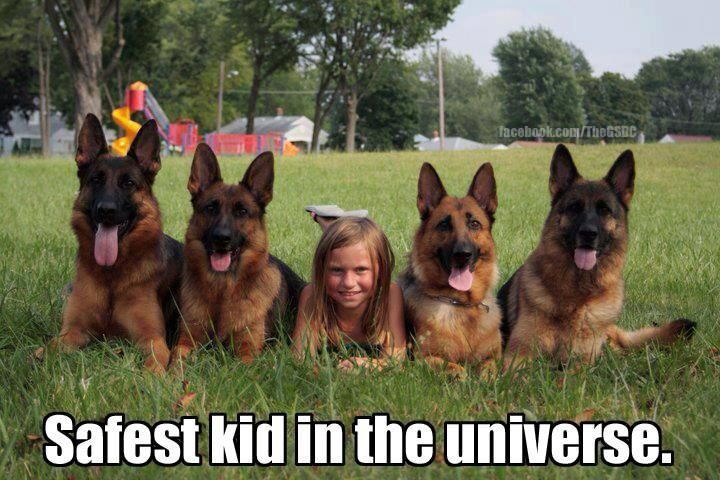 Safest kid in the universe.  German Sheperd protection!