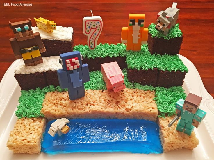 Minecraft Birthday Cake Made Allergy Friendly Dairy Free