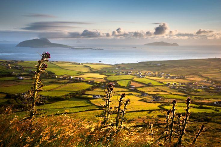 The coastline of Ireland