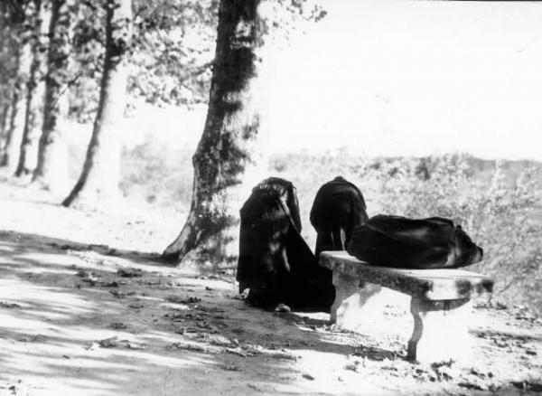 Viale alberato - Anziane (Ernesto Fazioli - 1930)