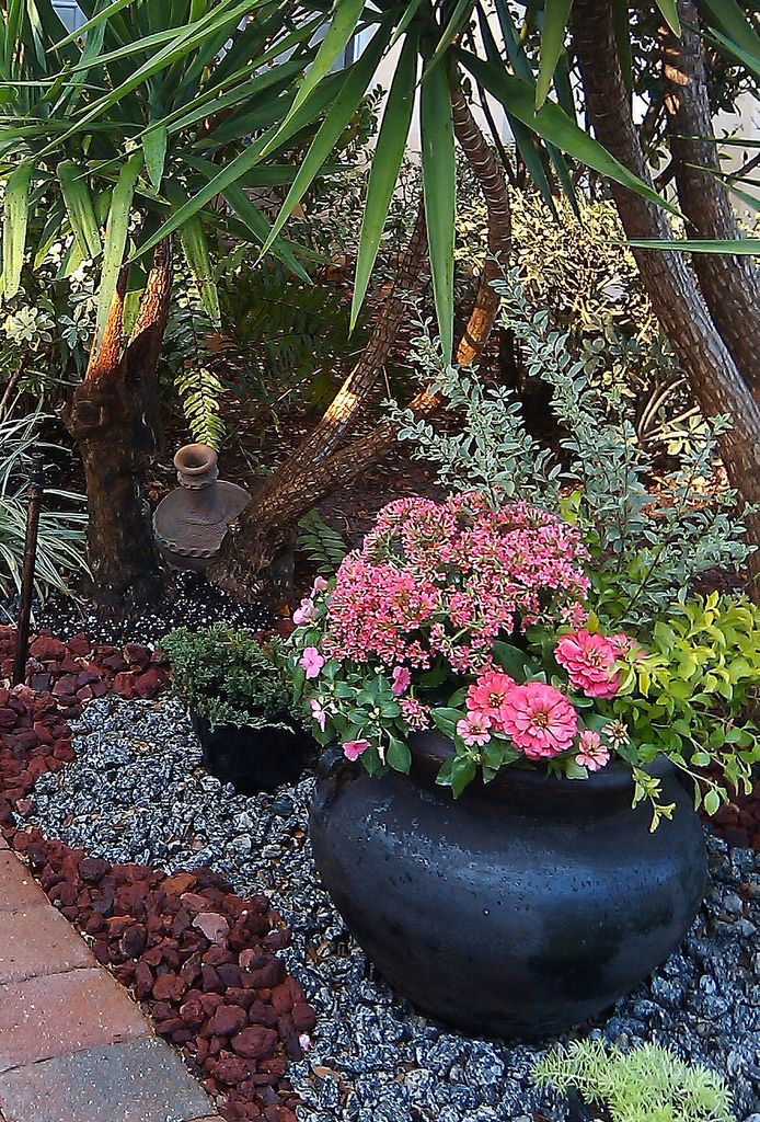 Spring garden containers red lava rocks relate to the for Small red rocks for landscaping
