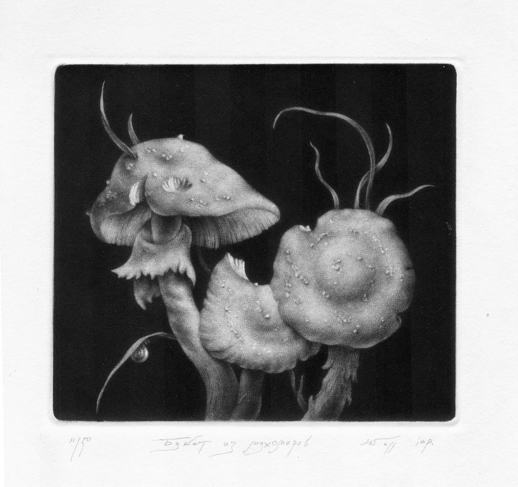 Konstantin Chmutin,  A bouquet of fly agarics, 2011, mezzotint, 260 х 260 mm  #gift_tips: ask ART re.FLEX stuff for Konstantin Chmutin's graphics   Konstantin Chmutin, one of St Petersburg's leading printmakers, uses the 17th-century mezzotint technique to make his still-life studies. The joy of his simple images derives from his control of tones, from a rich velvet black through shades of grey to white.