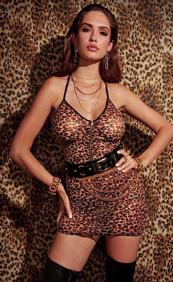 Chemises, Valentines Day: Leopard Print Stretch Mesh