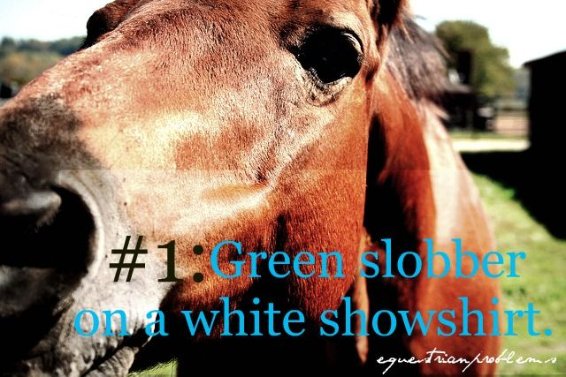 Equestrian Problems #1