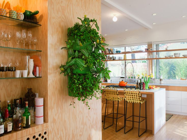 Jardin vertical int rieur et ext rieur un vrai gain de place balcony garden living wall - Jardin vertical interieur ...
