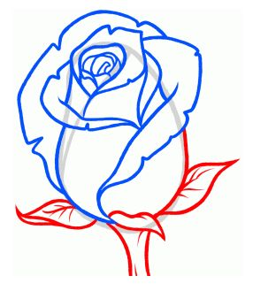 How to Drawn a Rosebud. Step-by-Step Instructions