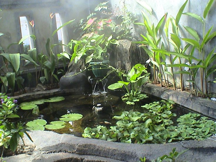 439 best images about pond and garden landscaping on for Koi ponds durban