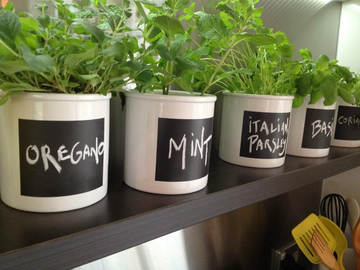 Libby & Ben's herb pots. These came from The Warehouse, but if you've got some pots already, grab some chalkboard paint, mask it off, and make them for yourself #weekendproject